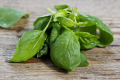 Leaves of fresh basil on vintage brown wooden table Stock Photos