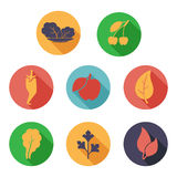 Leaves, fruit and vegetables icons. Flat style Royalty Free Stock Photography