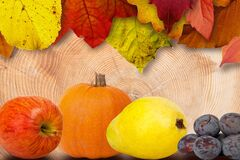 Leaves and Fruits Royalty Free Stock Photos