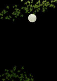 Leaves and full moon Royalty Free Stock Image