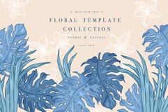 leaves gömma i handflatan tropiskt Djungeldesignbakgrund eller affischmall Inristade djungelsidor för vektor illustration färgrik vektor illustrationer