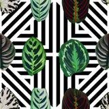 Leaves geo seamless pattern Stock Image