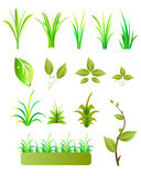 Leaves and grass Stock Photos