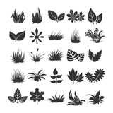 Leaves and grass silhouettes on white background Stock Images