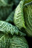 Leaves of a green cabbage on a stall royalty free stock images