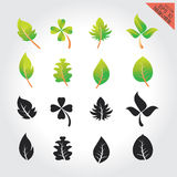 Leaves green design set elements This image is a vector illustration Stock Image