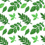 Leaves of green glitter on white background, seamless pattern Royalty Free Stock Images