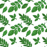 Leaves of green glitter on white background, seamless pattern Stock Photos
