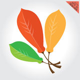 Leaves green orange design elements This set  image is a vector illustration Stock Photography