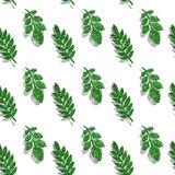 Leaves of green and silver glitter on white background, seamless pattern Stock Photos