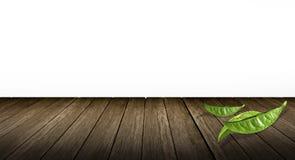 Leaves  Green tea Stock Photography