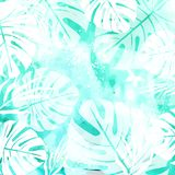 Leaves on Green Watercolor Background Royalty Free Stock Images