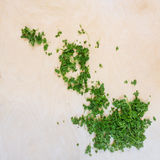 Leaves of greenery, parsley on a wooden surface Royalty Free Stock Images