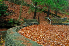 Leaves on ground in park. A blanket of newly fallen autumn leaves near Wolf Creek, in Letchworth State Park, New York royalty free stock photo