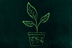 Leaves growing from a vase with world map on it Royalty Free Stock Images