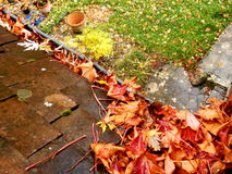 Leaves in the gutter Stock Photo