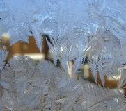 Leaves of ice. Frost-covered window royalty free stock image