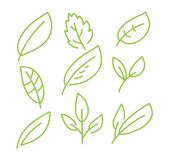 Leaves icon hand drawn  set isolated on white background. Shapes of green leaves of trees and plants. Elements for eco and bio logos Stock Image
