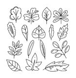 Leaves icon hand drawn  set isolated on white background. Shapes of green leaves of trees and plants. Elements for eco and bio logos Royalty Free Stock Photos