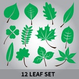 Leaves icon set eps10. Green leaves simple icon set eps10 Vector Illustration