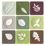 Leaves icon.  Are used as buttons for web design Royalty Free Stock Images