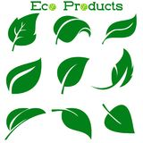Leaves icon vector set isolated on white background. Various shapes of green leaves of trees and plants. Elements for. Eco logos Stock Images