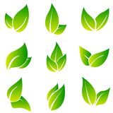 Leaves icon vector set isolated on white background. Various shapes of green leaves of trees and plants. Elements for. Eco and bio logos. Collection of green Royalty Free Stock Images