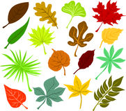 Leaves icons Royalty Free Stock Photo