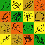 Leaves. Icons depicting different kinds of leaves Royalty Free Stock Images