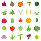 Leaves icons set, cartoon style. Leaves icons set. Cartoon set of 25 leaves vector icons for web isolated on white background Stock Image