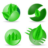 Leaves Icons. Set of Green Leaves Icons Isolated on White Background Royalty Free Stock Photos