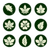 Leaves icons set Stock Photos