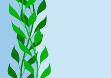 Leaves illustration Stock Image