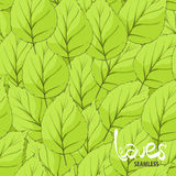 Leaves illustration Royalty Free Stock Images