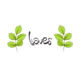 Leaves illustration Stock Image