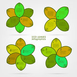 Leaves infographic Royalty Free Stock Photography