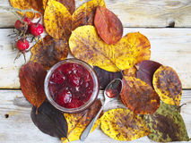 Leaves, jam and rose hips. Autumn still life with leaves, jam and rose hips Stock Photography