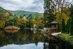 Leaves on a lake. Beautiful lake near health resorts `Rajecké kúpele` at Slovakia Stock Photo
