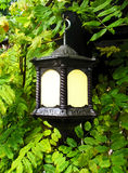 Leaves and Lantern. Lighted lanterns hanging from vine-covedred arbor Stock Photos