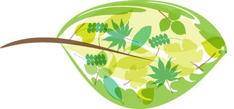 Nature logo. Small leaves in a giant leaf. Great for logo ideas, publications and presentations. Adobe AI available Royalty Free Stock Photos