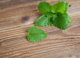 Leaves of lemon balm on wood Stock Photos