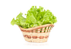 Leaves of lettuce in a basket Stock Photos