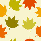 Leaves on a Light Background Stock Photography