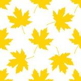 leaves mönsan seamless din bakgrundsdesign arkivfoto