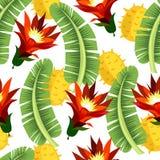 leaves mönsan tropiskt royaltyfri illustrationer