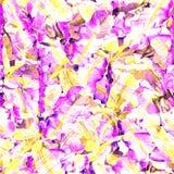 leaves mönsan tropiskt Royaltyfri Bild