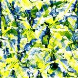 leaves mönsan tropiskt Arkivbilder