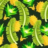 leaves mönsan tropiskt Seamless bakgrund Djungel royaltyfri illustrationer
