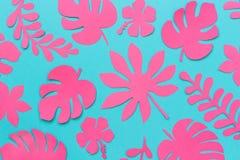 leaves m?nsan tropiskt Moderiktiga rosa tropiska sidor av papper p? bl? bakgrund L?genheten l?gger, ?verkant-nersammans?ttning, i royaltyfri foto