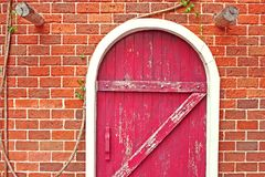 Leaves Magenta Wooden Door Red Maroon Bricks Architecture Background. Old Style Design Tree Bush Green Brown royalty free stock photos